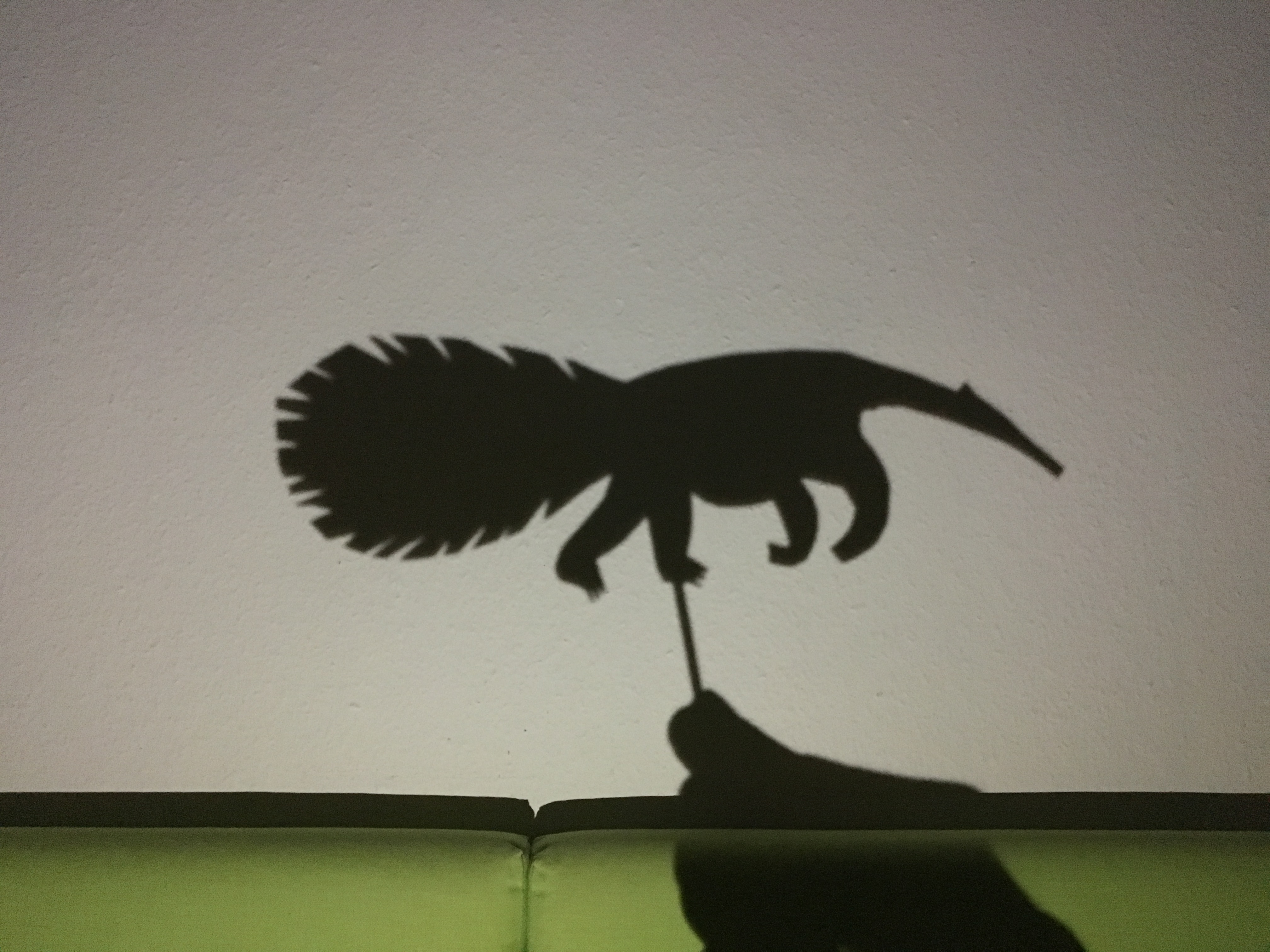 Shadow play - anteater